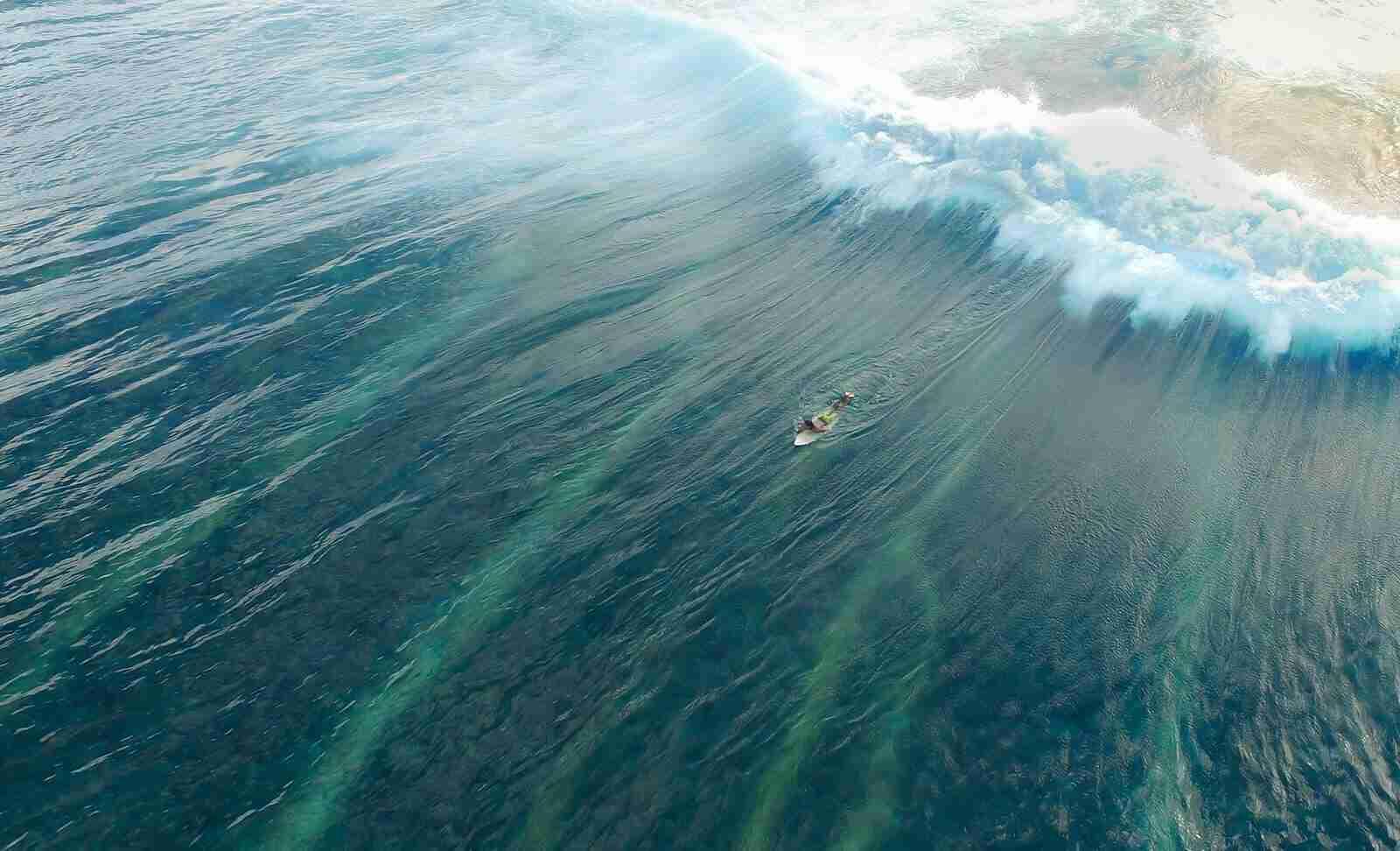 """San Diego says, """"Surfs Up!"""""""